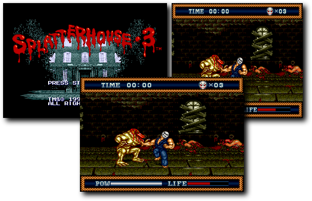 [Image: /grafx/games/ASPECT-splatterhouse.png]
